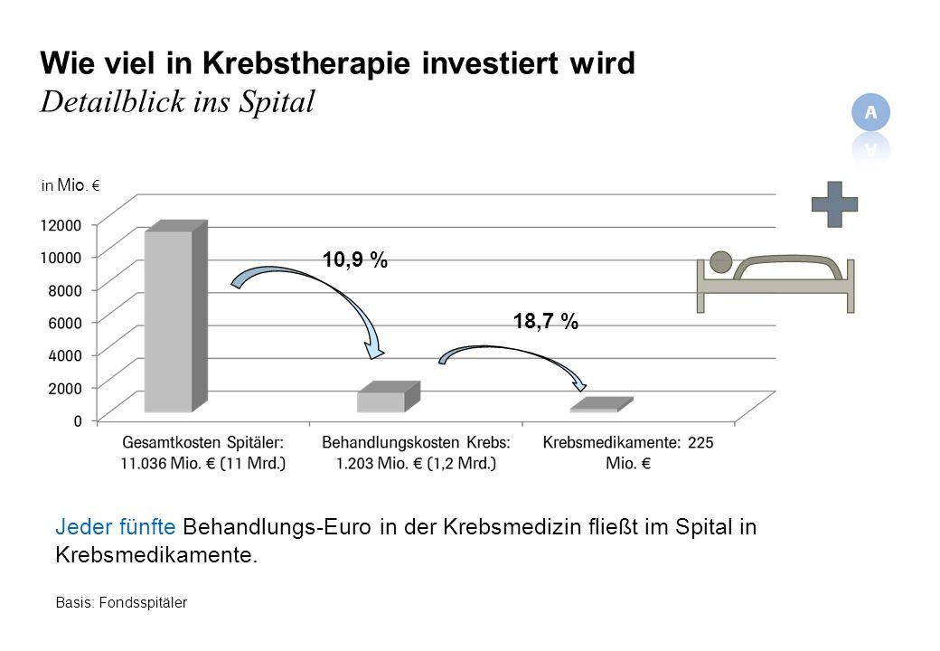 Wie viel in Krebstherapie investiert wird Detailblick ins Spital Jeder fünfte Behandlungs-Euro in der Krebsmedizin fließt im Spital in Krebsmedikamente.