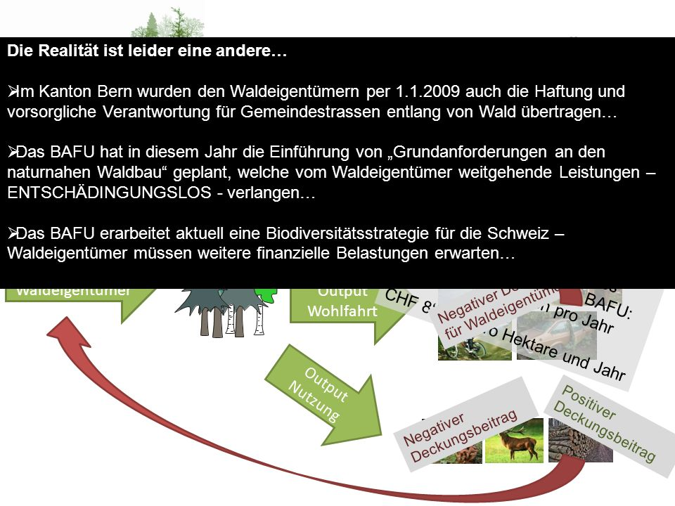 Wald – Eigentumsrechte - Behörden Input Waldeigentümer Output Schutz Output Wohlfahrt Output Nutzung Erholungsnutzen des Waldes gemäss einer Studie des BAFU: CHF 10 Mia.