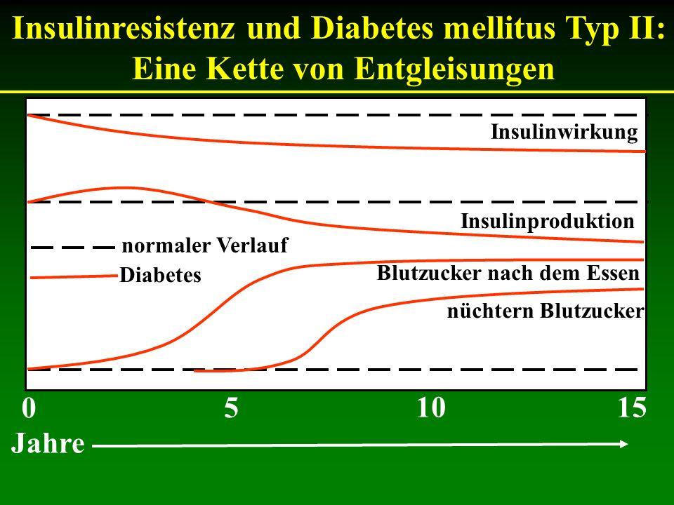 Insulinresistenz und Diabetes mellitus Typ II: Eine Kette von Entgleisungen Insulinwirkung Insulinproduktion Blutzucker nach dem Essen nüchtern Blutzu