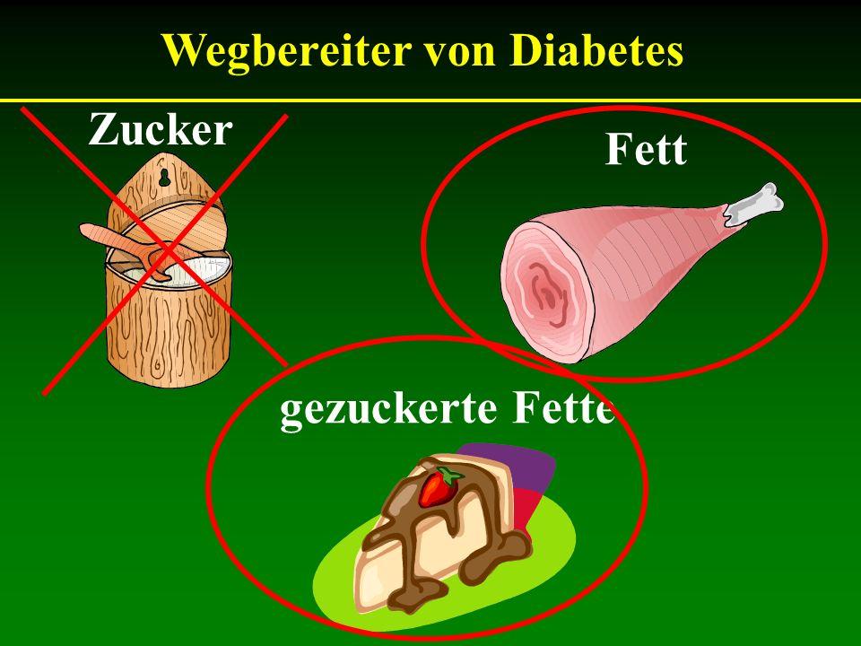 Wegbereiter von Diabetes Zucker Fett gezuckerte Fette
