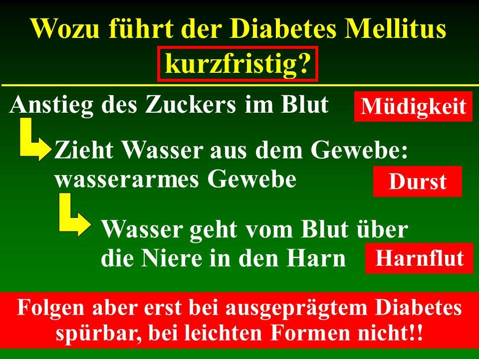Wozu führt der Diabetes Mellitus kurzfristig? Anstieg des Zuckers im Blut Zieht Wasser aus dem Gewebe: wasserarmes Gewebe Wasser geht vom Blut über di