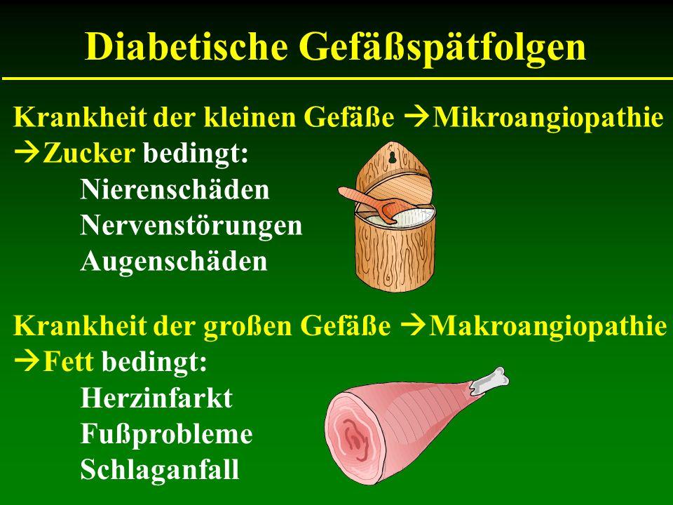 Krankheit der kleinen Gefäße Mikroangiopathie Zucker bedingt: Nierenschäden Nervenstörungen Augenschäden Krankheit der großen Gefäße Makroangiopathie