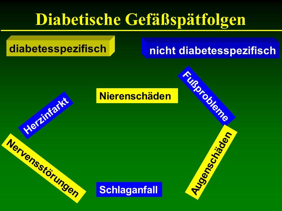 Diabetische Gefäßspätfolgen Augenschäden Nierenschäden Nervensstörungen Schlaganfall Fußprobleme Herzinfarkt diabetesspezifisch nicht diabetesspezifis