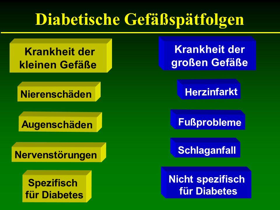 Diabetische Gefäßspätfolgen Krankheit der kleinen Gefäße Krankheit der großen Gefäße Fußprobleme Augenschäden Schlaganfall Nervenstörungen Herzinfarkt