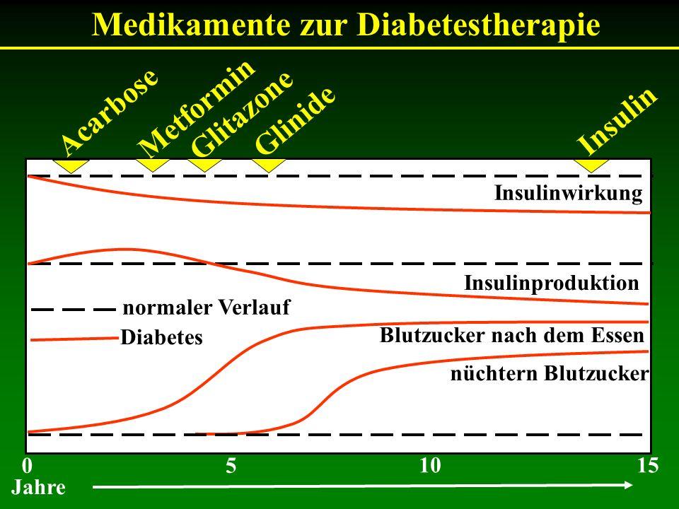 Medikamente zur Diabetestherapie Insulinwirkung Insulinproduktion Blutzucker nach dem Essen nüchtern Blutzucker normaler Verlauf Diabetes Acarbose Met