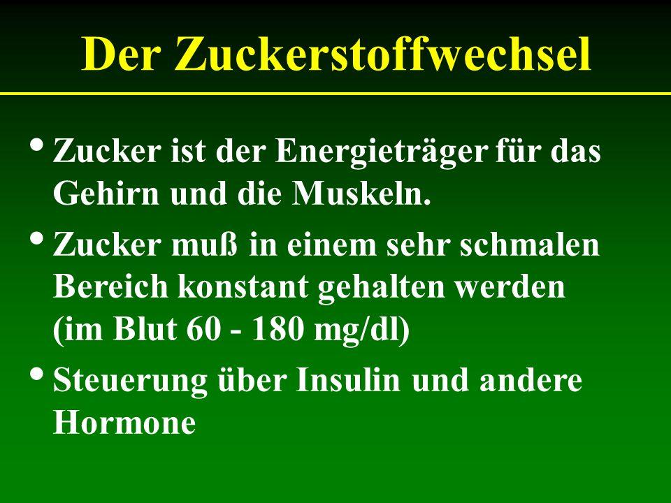 Pharmaka zur Therapie des Typ 2 Diabetes Acarbose - Glucobay® Metformin - Glucophage® Glitazone - Actos® Glinide - Starlix® Sulfonylharnstoffe - Amaryl® Insulin