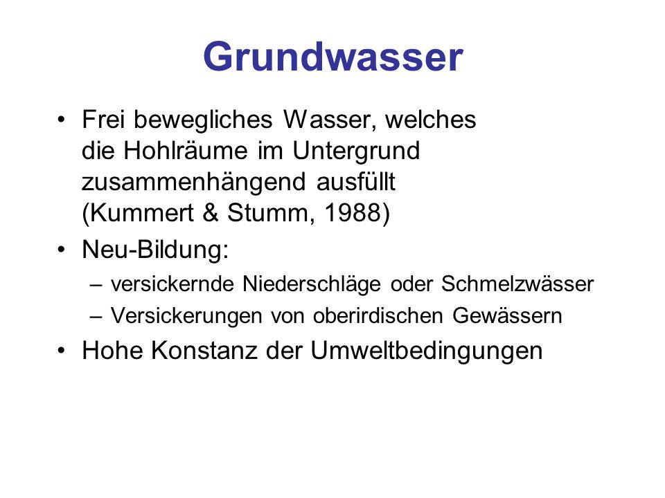 Grundwasser Frei bewegliches Wasser, welches die Hohlräume im Untergrund zusammenhängend ausfüllt (Kummert & Stumm, 1988) Neu-Bildung: –versickernde N