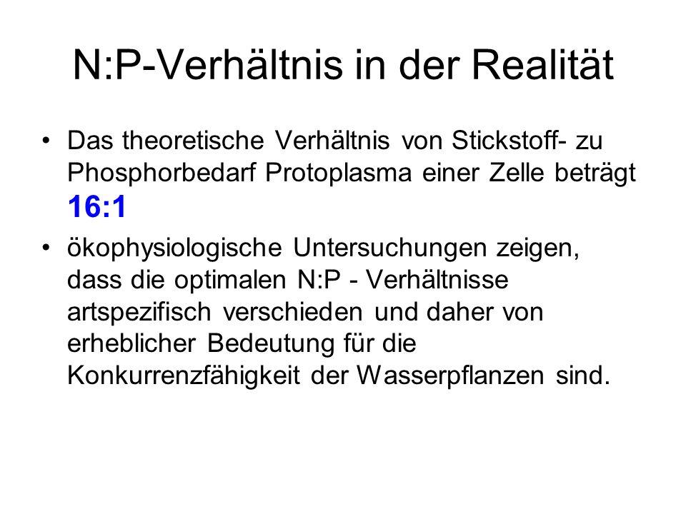 N:P-Verhältnis in der Realität Das theoretische Verhältnis von Stickstoff- zu Phosphorbedarf Protoplasma einer Zelle beträgt 16:1 ökophysiologische Un