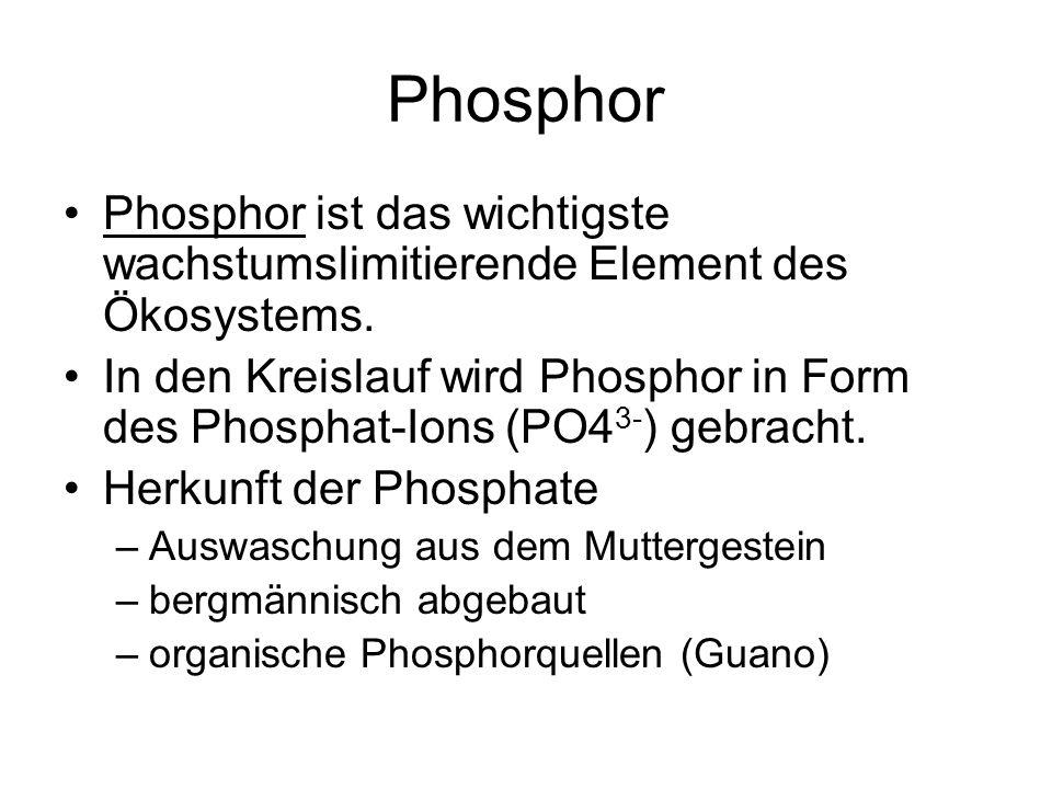 Phosphor Phosphor ist das wichtigste wachstumslimitierende Element des Ökosystems. In den Kreislauf wird Phosphor in Form des Phosphat-Ions (PO4 3- )