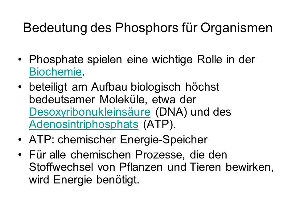 Bedeutung des Phosphors für Organismen Phosphate spielen eine wichtige Rolle in der Biochemie. Biochemie beteiligt am Aufbau biologisch höchst bedeuts