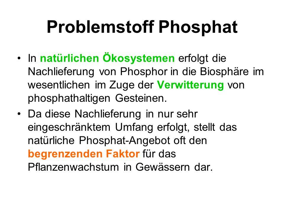 Problemstoff Phosphor Der für alle Lebewesen unersetzliche Phosphor wird zum Problemstoff, wenn er als Phosphat in die Ökosysteme in so großen Mengen eingetragen wird, dass es den eingespielten Kreislauf des Phosphors empfindlich stört.