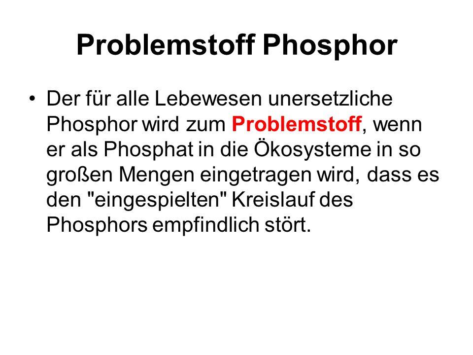 Problemstoff Phosphor Der für alle Lebewesen unersetzliche Phosphor wird zum Problemstoff, wenn er als Phosphat in die Ökosysteme in so großen Mengen