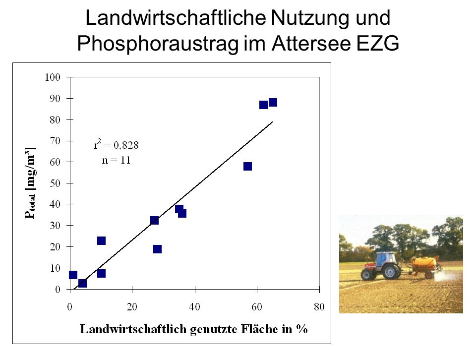 Nährstoffbilanzen Berechnung/Prognose Austragskoeffizienten –Grundlast –Gebietsnutzung –GVE –EWG Messungen –Zubringer –See(Ausrinn)