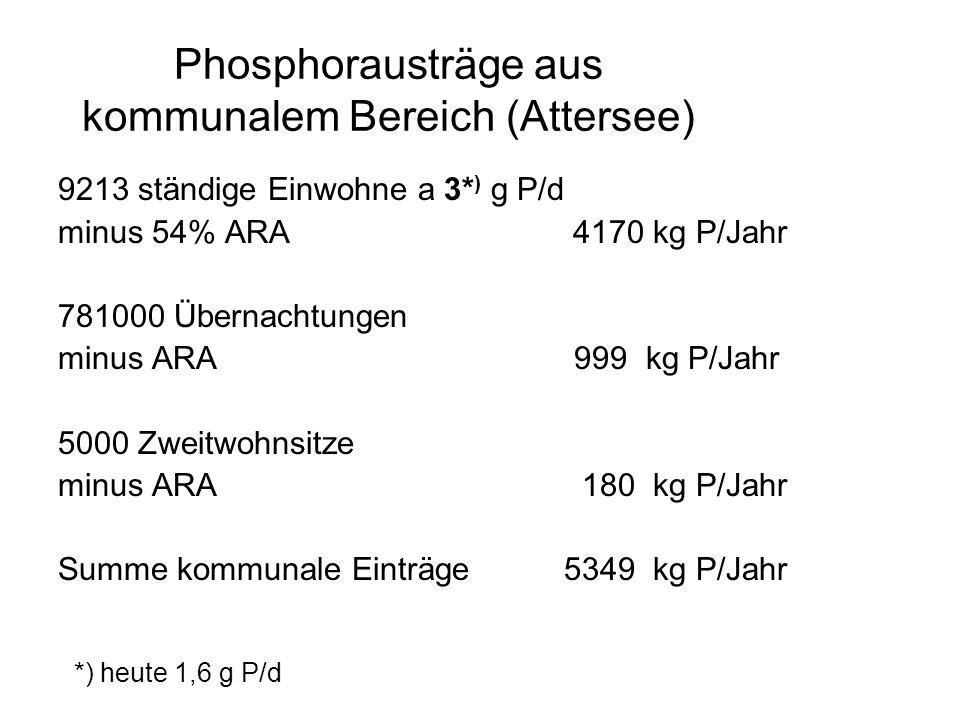 P-Eintrag durch Niederschläge auf die Seefläche Messungen im Salzkammergut Konzentration –1981: 22 µg/l –1982: 24 µg/l Summe Seefläche: 1470 kg P/Jahr Fracht: 32 kg/m 2 /Jahr Literatur (Reckhow et al.