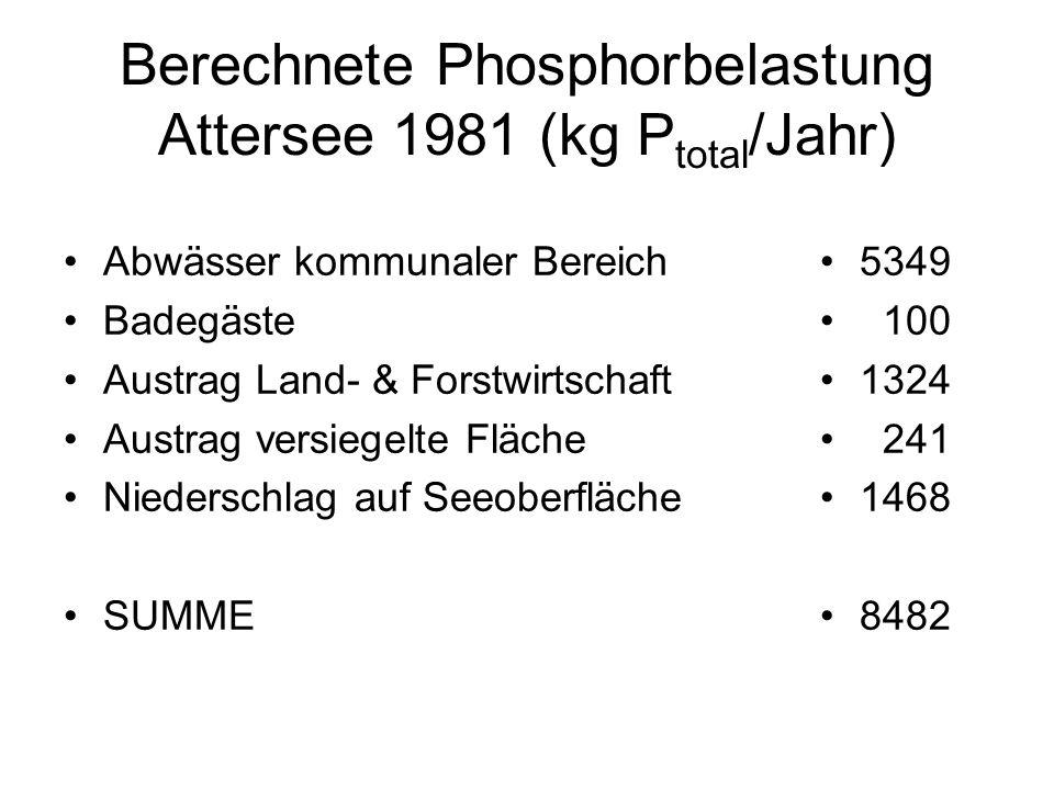 Berechnete Phosphorbelastung Attersee 1981 (kg P total /Jahr) Abwässer kommunaler Bereich Badegäste Austrag Land- & Forstwirtschaft Austrag versiegelt