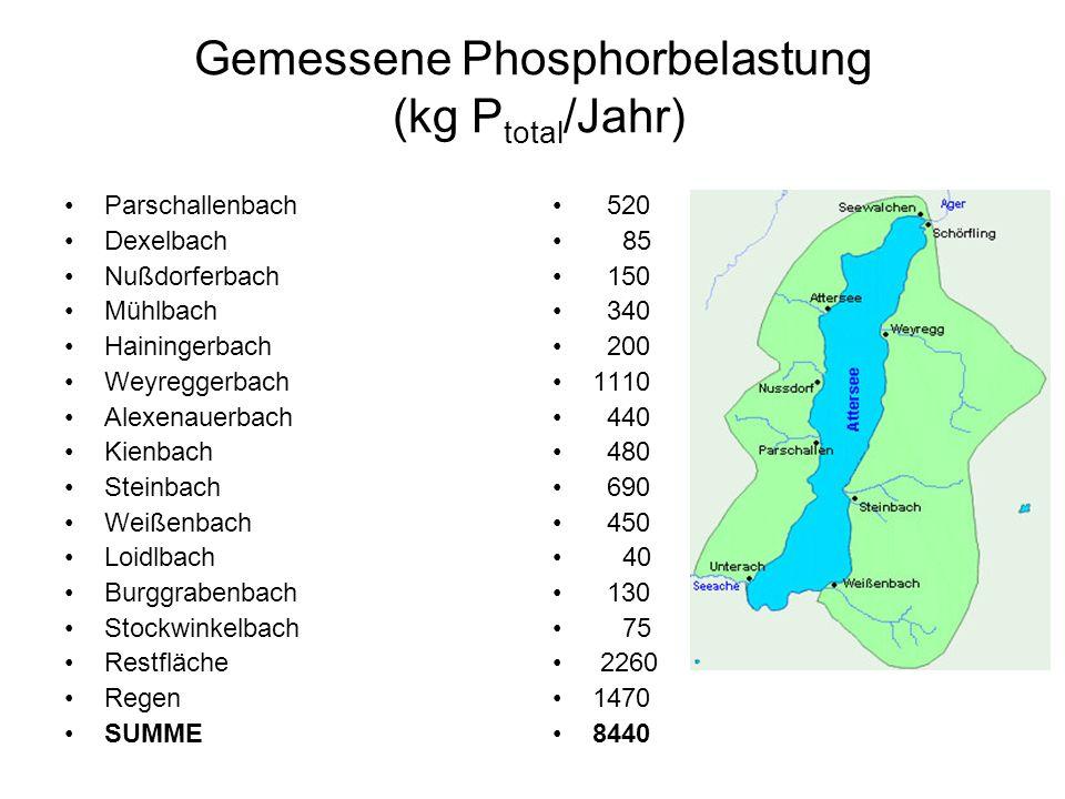 Berechnete Phosphorbelastung Attersee 1981 (kg P total /Jahr) Abwässer kommunaler Bereich Badegäste Austrag Land- & Forstwirtschaft Austrag versiegelte Fläche Niederschlag auf Seeoberfläche SUMME berechnet SUMME gemessen 5349 100 1324 241 1468 8482 8440