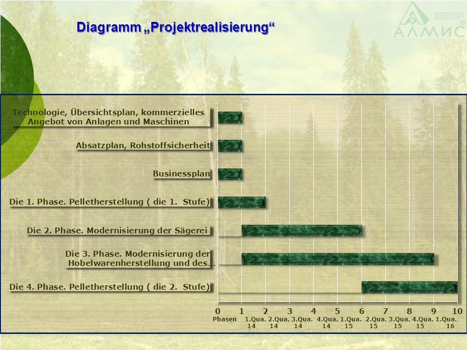 Diagramm Projektrealisierung Phasen 1.Qua. 2.Qua.
