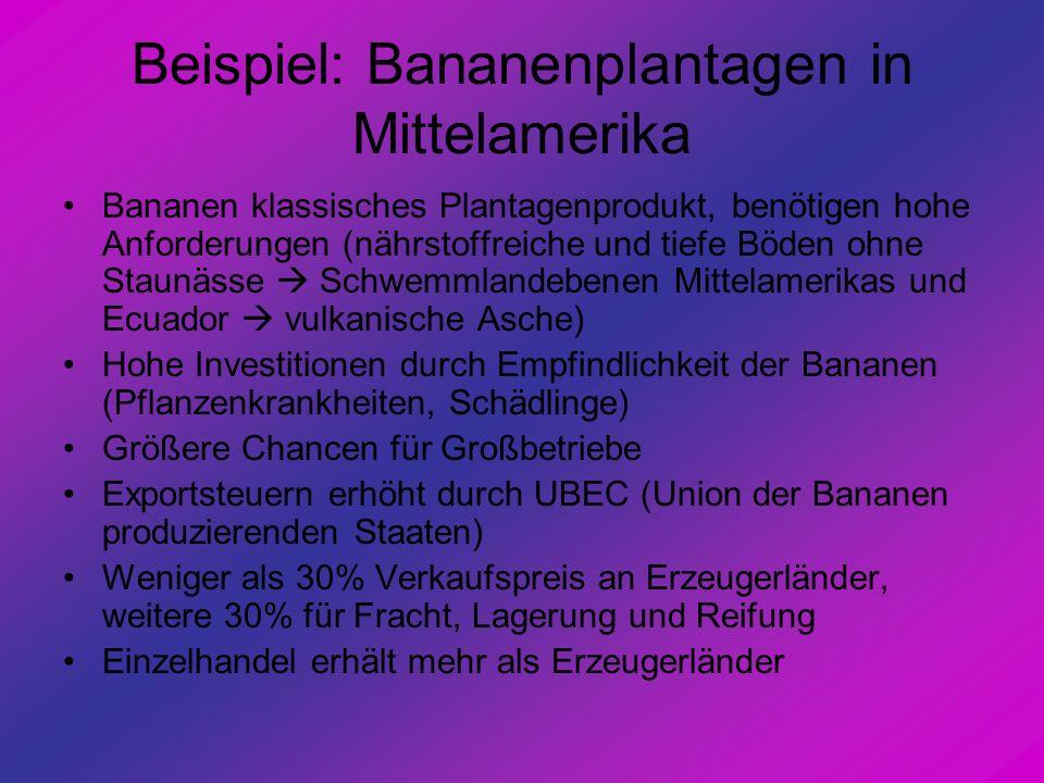 Beispiel: Bananenplantagen in Mittelamerika Bananen klassisches Plantagenprodukt, benötigen hohe Anforderungen (nährstoffreiche und tiefe Böden ohne S