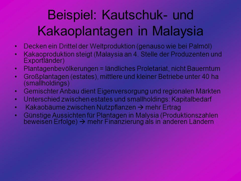 Beispiel: Kautschuk- und Kakaoplantagen in Malaysia Decken ein Drittel der Weltproduktion (genauso wie bei Palmöl) Kakaoproduktion steigt (Malaysia an