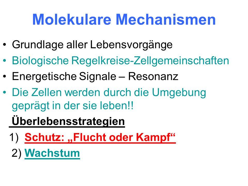 Wissenschaft der Epigenetik.