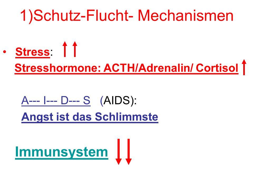 2.Schutz: Immunsystem Bakterien--- Viren---Parasiten toxische Stoffe--- Elektrosmog chronische Entzündungsherde