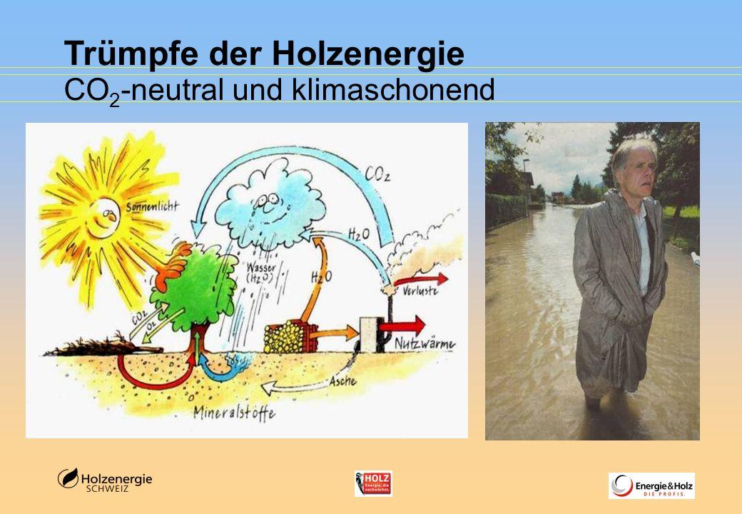 Trümpfe der Holzenergie CO 2 -neutral und klimaschonend
