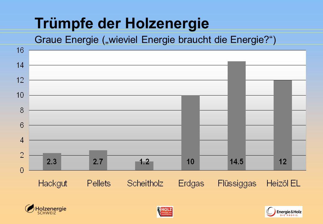 Trümpfe der Holzenergie Graue Energie (wieviel Energie braucht die Energie?)