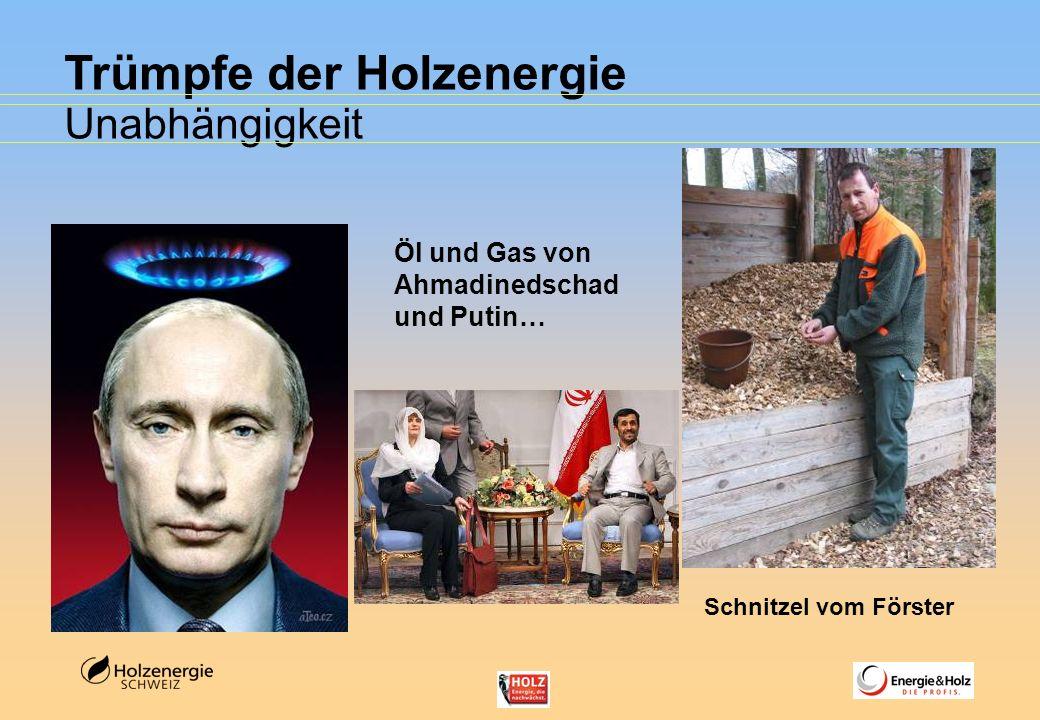 Trümpfe der Holzenergie Unabhängigkeit Öl und Gas von Ahmadinedschad und Putin… Schnitzel vom Förster