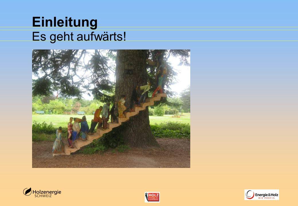 Zusätzliches Potenzial 4 – 5 Mio.m3 Woher stammt dieses Holz.