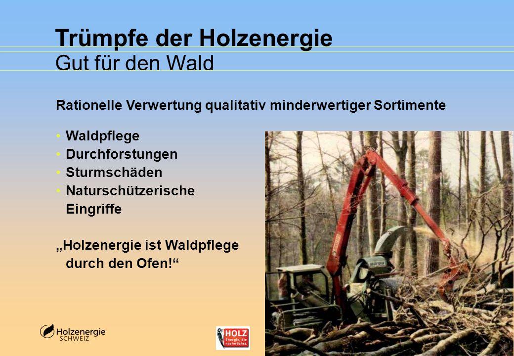 Trümpfe der Holzenergie Gut für den Wald Rationelle Verwertung qualitativ minderwertiger Sortimente Waldpflege Durchforstungen Sturmschäden Naturschüt