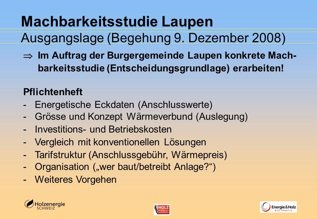 Machbarkeitsstudie Laupen Ausgangslage (Begehung 9. Dezember 2008) Im Auftrag der Burgergemeinde Laupen konkrete Mach- barkeitsstudie (Entscheidungsgr
