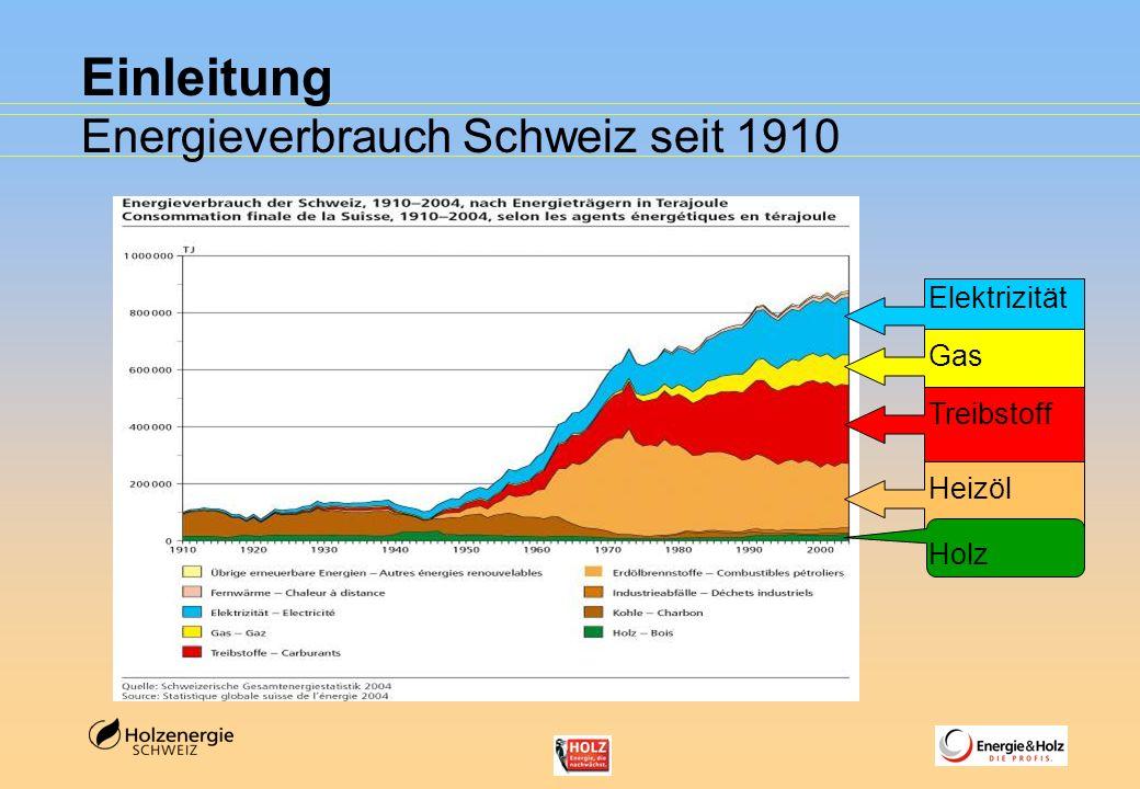Einleitung Energieverbrauch Schweiz seit 1910 Treibstoff Gas Elektrizität Heizöl Holz