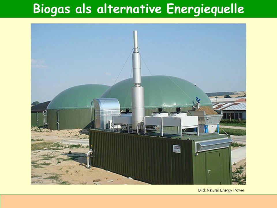 Abteilung Agrarwirtschaft BAL 08L Einkommensalternative Zusätzliche Verwertung von Wirtschaftsdüngern (Gülle, Mist.) Zusätzliche Verwertung von Wärme Ohne Flächenverbrauch für Energiepflanzen noch größerer Verfall der Preise im Ackerbau Vorteile der Biogasnutzung für die Landwirtschaft