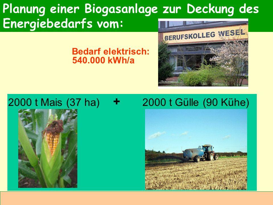 Abteilung Agrarwirtschaft BAL 08L Planung einer Biogasanlage zur Deckung des Energiebedarfs vom: 2000 t Mais (37 ha)2000 t Gülle (90 Kühe) + Bedarf el