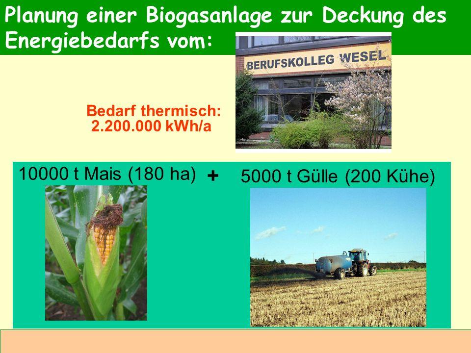 Abteilung Agrarwirtschaft BAL 08L Bedarf thermisch: 2.200.000 kWh/a Planung einer Biogasanlage zur Deckung des Energiebedarfs vom: 10000 t Mais (180 h