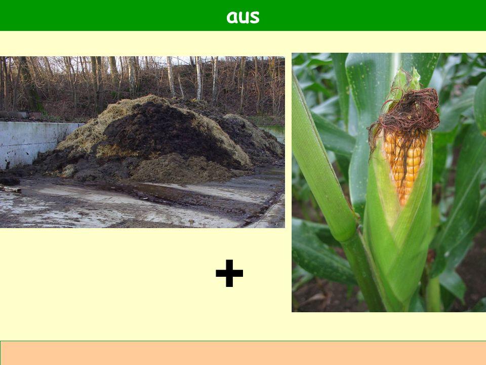 Abteilung Agrarwirtschaft BAL 08L Vergütungsregelungen für Strom aus Biogas Quelle: Gruber 2009 Biogasanlagen in der Landwirtschaft