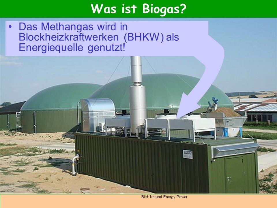 Abteilung Agrarwirtschaft BAL 08L Das Methangas wird in Blockheizkraftwerken (BHKW) als Energiequelle genutzt! Was ist Biogas? Bild: Natural Energy Po