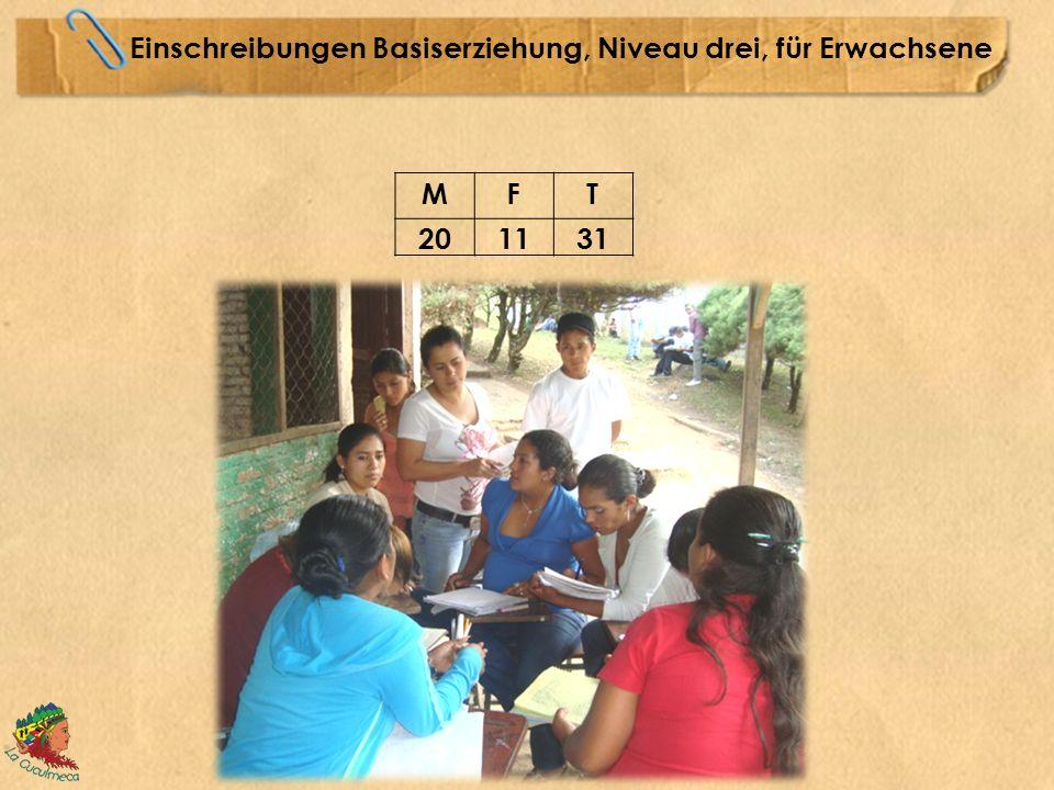 Einschreibungen Basiserziehung, Niveau drei, für Erwachsene MFT 201131