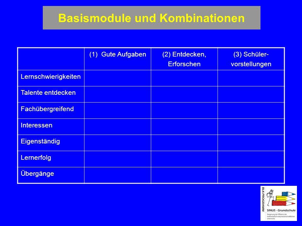 Basismodule und Kombinationen (1) Gute Aufgaben (2) Entdecken, Erforschen (3) Schüler- vorstellungen Lernschwierigkeiten Talente entdecken Fachübergre