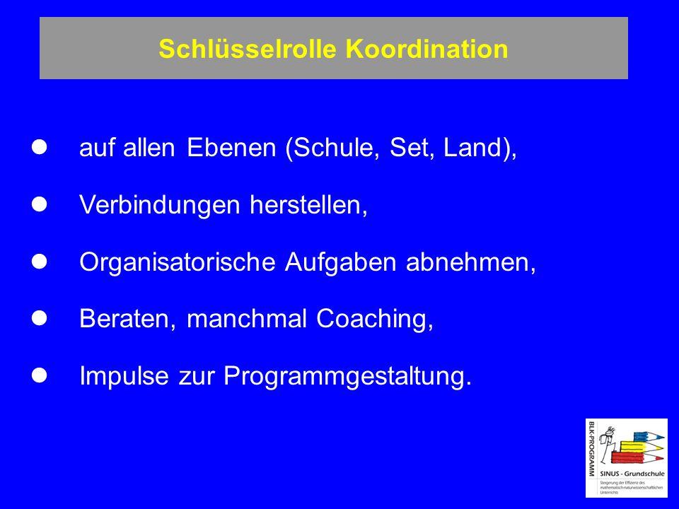 Schlüsselrolle Koordination auf allen Ebenen (Schule, Set, Land), Verbindungen herstellen, Organisatorische Aufgaben abnehmen, Beraten, manchmal Coach