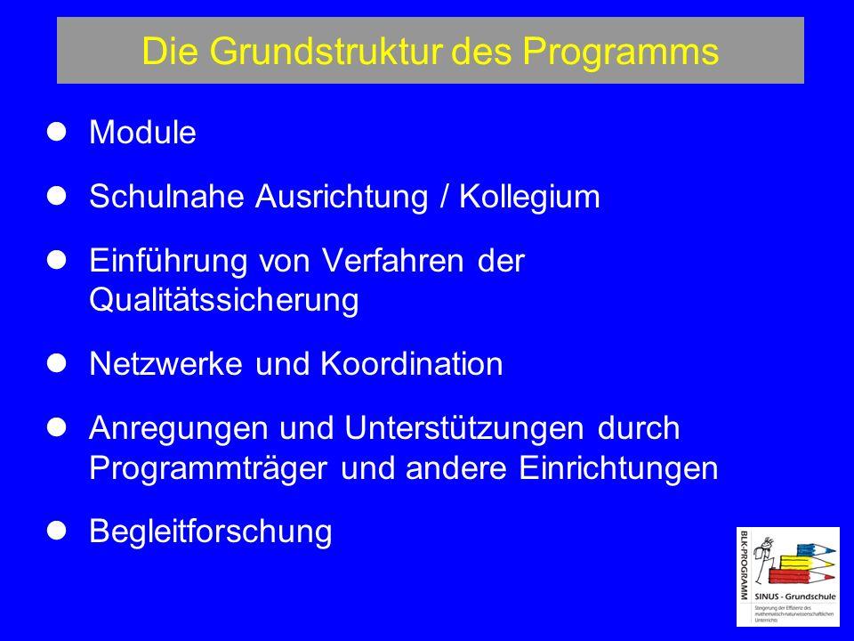 Die Grundstruktur des Programms Module Schulnahe Ausrichtung / Kollegium Einführung von Verfahren der Qualitätssicherung Netzwerke und Koordination Anregungen und Unterstützungen durch Programmträger und andere Einrichtungen Begleitforschung