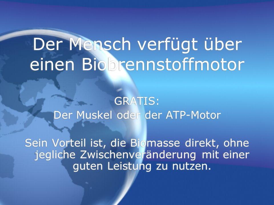 Der Mensch verfügt über einen Biobrennstoffmotor GRATIS: Der Muskel oder der ATP-Motor Sein Vorteil ist, die Biomasse direkt, ohne jegliche Zwischenveränderung mit einer guten Leistung zu nutzen.