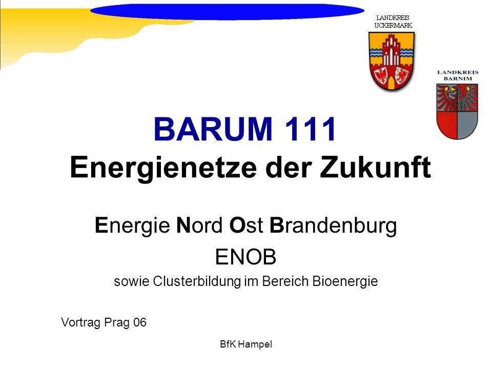 BfK Hampel BARUM 111 Energienetze der Zukunft Energie Nord Ost Brandenburg ENOB sowie Clusterbildung im Bereich Bioenergie Vortrag Prag 06
