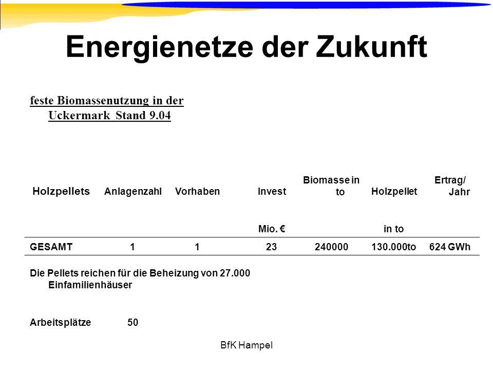 BfK Hampel Energienetze der Zukunft feste Biomassenutzung in der Uckermark Stand 9.04 Holzpellets AnlagenzahlVorhabenInvest Biomasse in toHolzpellet E