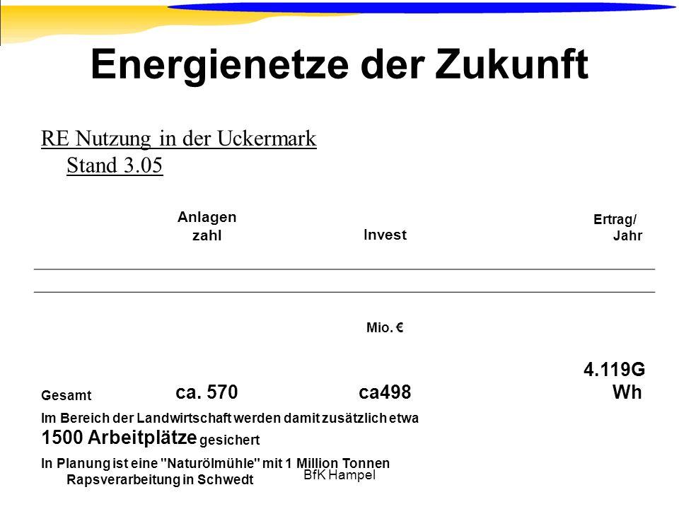BfK Hampel Energienetze der Zukunft RE Nutzung in der Uckermark Stand 3.05 Anlagen zahlInvest Ertrag/ Jahr Mio. Gesamt ca. 570ca498 4.119G Wh Im Berei