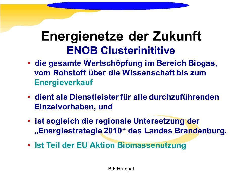 BfK Hampel die gesamte Wertschöpfung im Bereich Biogas, vom Rohstoff über die Wissenschaft bis zum Energieverkauf dient als Dienstleister für alle dur
