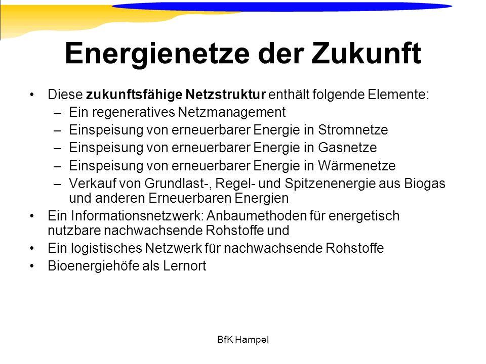 BfK Hampel Energienetze der Zukunft Diese zukunftsfähige Netzstruktur enthält folgende Elemente: –Ein regeneratives Netzmanagement –Einspeisung von er
