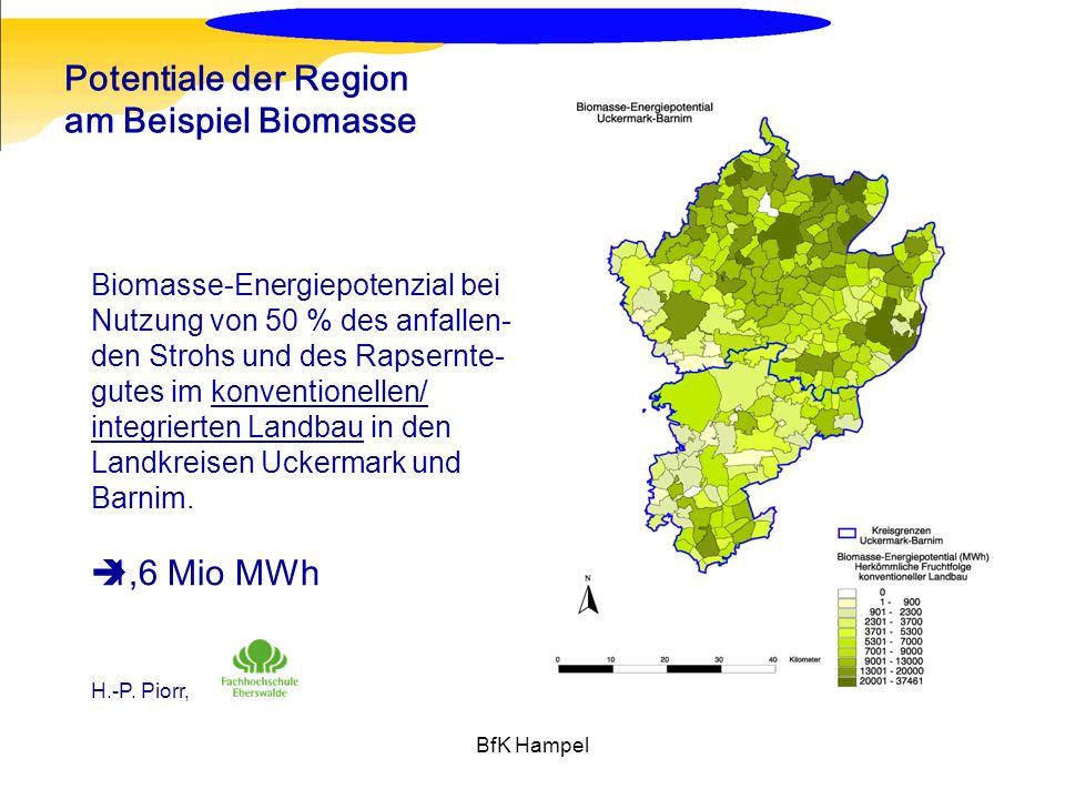 BfK Hampel Potentiale der Region am Beispiel Biomasse Biomasse-Energiepotenzial bei Nutzung von 50 % des anfallen- den Strohs und des Rapsernte- gutes