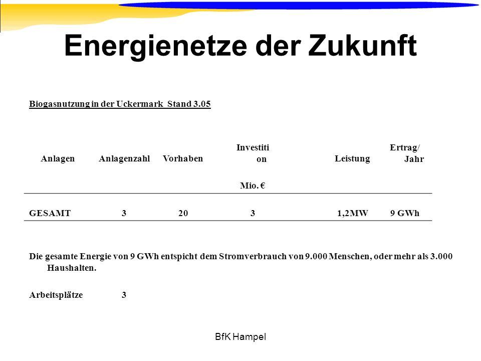 BfK Hampel Energienetze der Zukunft Biogasnutzung in der Uckermark Stand 3.05 AnlagenAnlagenzahlVorhaben Investiti onLeistung Ertrag/ Jahr Mio. GESAMT