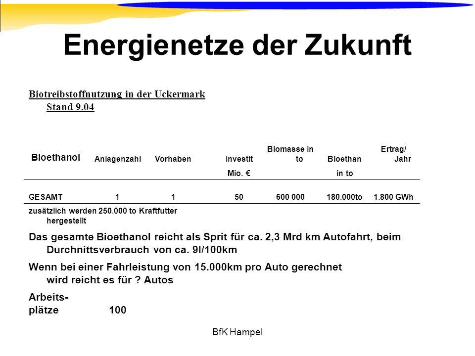 BfK Hampel Energienetze der Zukunft Biotreibstoffnutzung in der Uckermark Stand 9.04 Bioethanol AnlagenzahlVorhabenInvestit Biomasse in toBioethan Ert